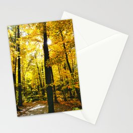 Sun Through Autumn Leaves Stationery Cards