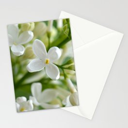 Spring 041 Stationery Cards