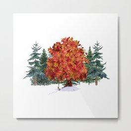 Autumn's Color Metal Print