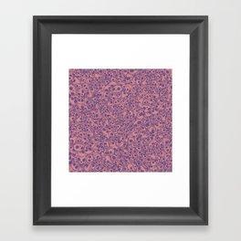 Pink Skulls...so many Framed Art Print