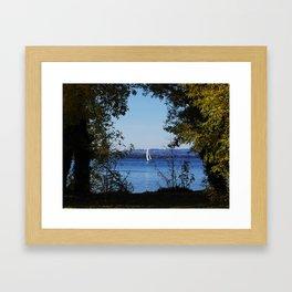 Sailer Framed Art Print