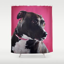 Super Pets Series 1 - Super Lucy 3 Shower Curtain