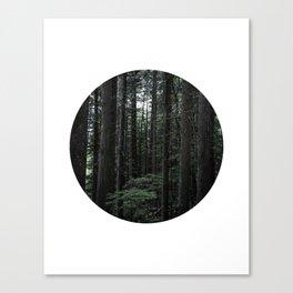 IMAGE: N°41 (Circle Print) Canvas Print