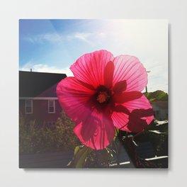 happy hibiscus  Metal Print