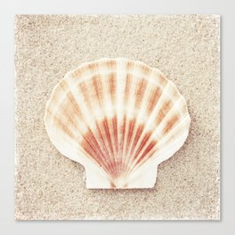 Scallop Shell Photography, Seashell Photograph, Peach Pastel Beach Photo Print Canvas Print