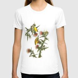 American Goldfinch John James Audubon Vintage Scientific Hand Drawn Illustration Birds T-shirt