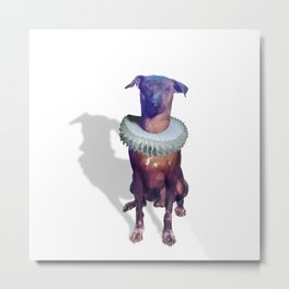 with money dancing the dog Metal Print