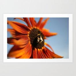 Busy Busy Bumblebee Art Print