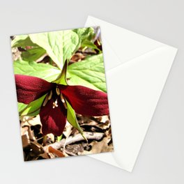 Red Trillium 2 Stationery Cards