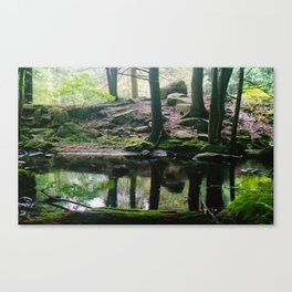 Green CT (Film) Canvas Print