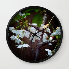 The beauty of Cherry flowers Wall Clock