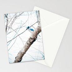 Mr Blue Jay Stationery Cards