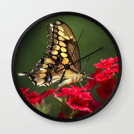 Giant Swallowtail Butterfly Wall Clock