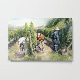 Vineyard Watercolor Landscape Wine Grapes Nature Metal Print