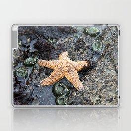 Starfish - La Push Laptop & iPad Skin