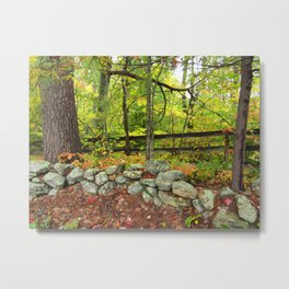 Stone Wall and Trees Metal Print