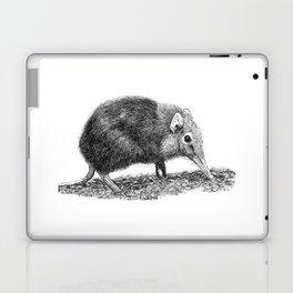 Black Shrew Laptop & iPad Skin