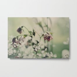 Withering Flowers. Metal Print