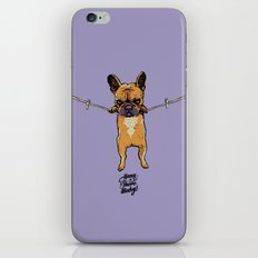 Hang in There Baby Frenchie iPhone & iPod Skin