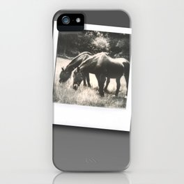 Polaroid Ponies iPhone Case