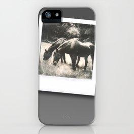 Polaroid Ponies iPhone Case