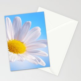 Daisy White 203 Stationery Cards