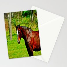 Equine Beauty Stationery Cards