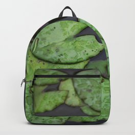 Afloat Lily Pad Nature Photograph Backpack