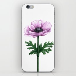 Pink Anemone Flower Painting iPhone Skin