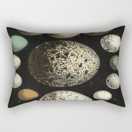 Naturalist Eggs Rectangular Pillow