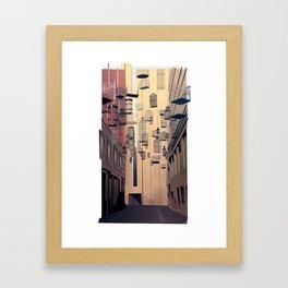 Birdcage Alley Framed Art Print