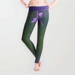 Sweet Lavender Leggings