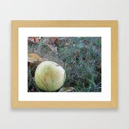 Apple in Fall Framed Art Print