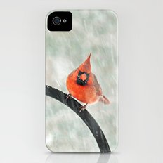 Male Cardinal in the Snow iPhone (4, 4s) Slim Case