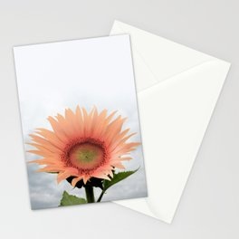 #sunflower Stationery Cards