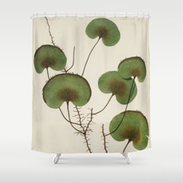Kidney Fern Shower Curtain