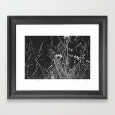 roadside wildflowers Framed Art Print