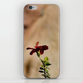 The Red Flower iPhone Skin