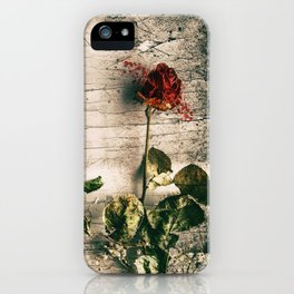 Dry Roses iPhone Case