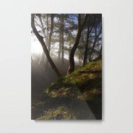 Magical Forest #nature #decor #society6 #buyart Metal Print