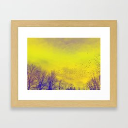 WARM TREES 1 _ keep the warm from the colors of fall Framed Art Print