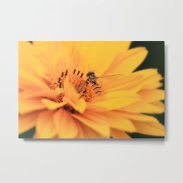 Macro Flower 2 Metal Print