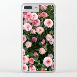 Beautiful pink flower field, shallow depth of field. Natural background with pink flowers, pink chry Clear iPhone Case