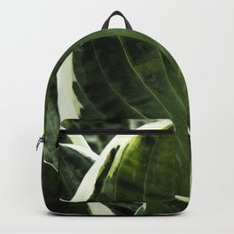 Hosta Leaf With Water Drop Backpack