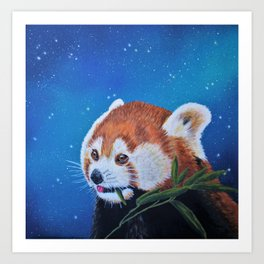 Red Panda Painting Art Print