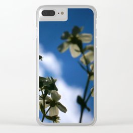 Low Angle of White Flowers With Blue Sky and Cloud in the Background Clear iPhone Case