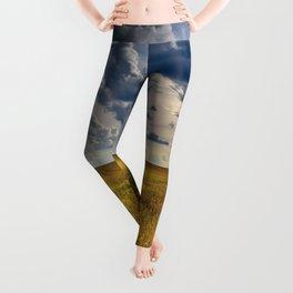 Yellow Wheat Leggings