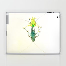 Hood Ornament Laptop & iPad Skin