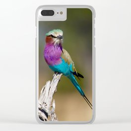 Lilac-Breasted Roller Perched on a Branch Clear iPhone Case