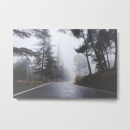 Dream forests. Into the foggy woods Metal Print